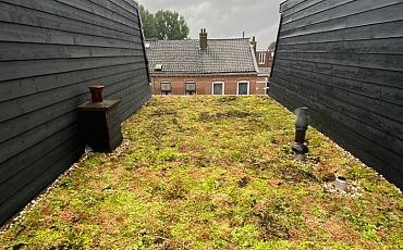 Groendak Utrecht