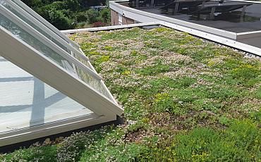 Interpolis: van Glashelder naar Groene daken